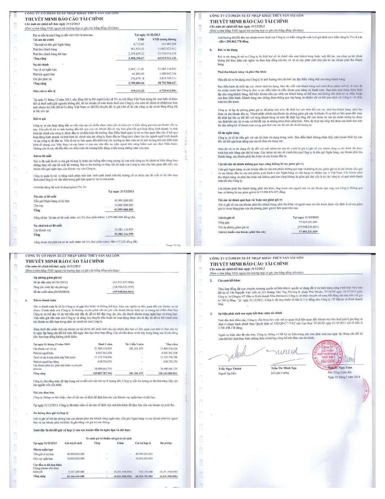 462014359_BC-Tai-Chinh-2013-K.Toan-TS-SG.compressed-page-008
